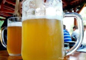 beer_news_2